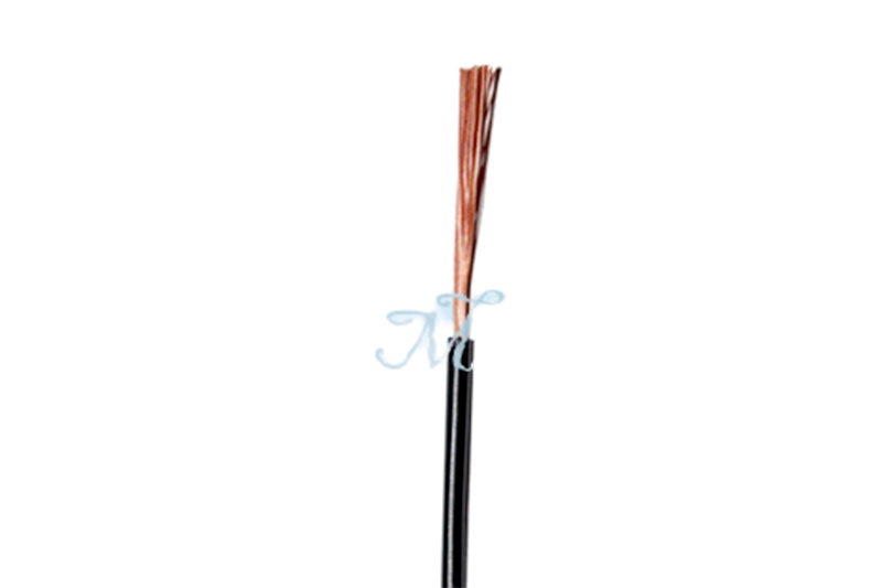 227 IEC06(RV)